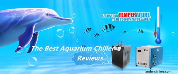 The Best Aquarium Chiller Reviews